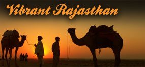 rajasthan tour operators